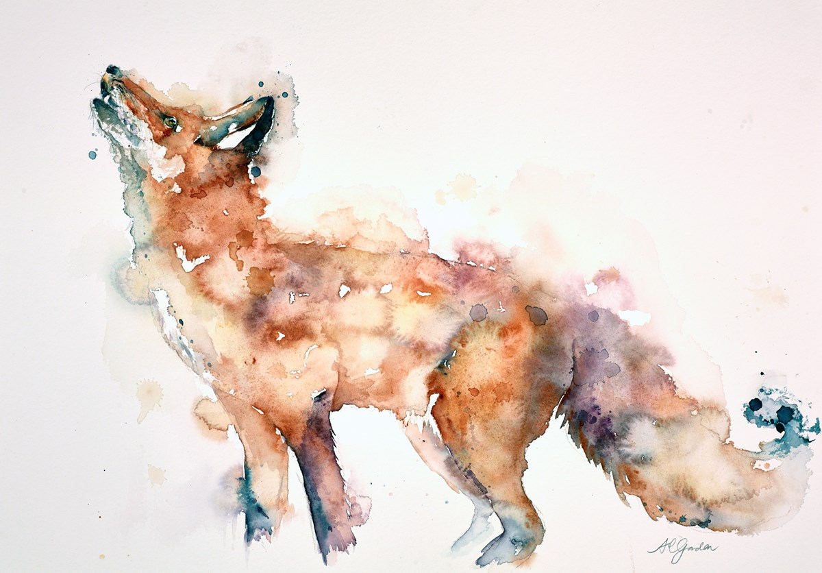 Transfixed Fox